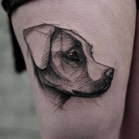 dibujo de perro labrador