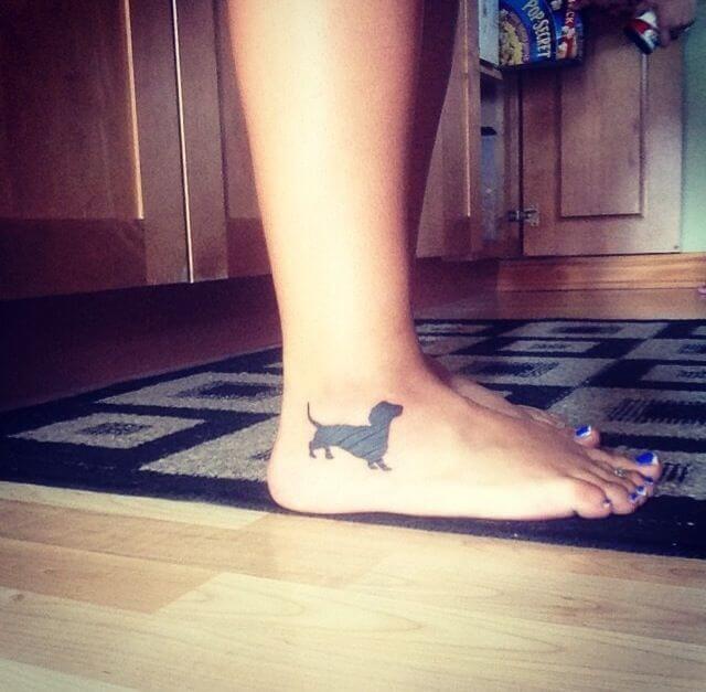 perro salchicha en el tobillo