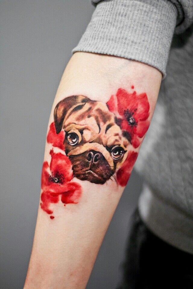pug y rosas a color