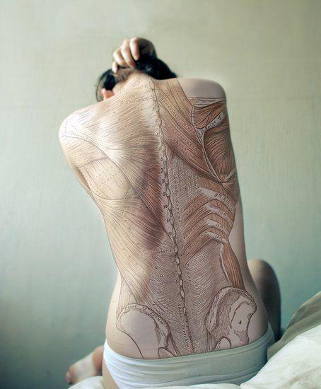 tatuaje anatomico en la espalda