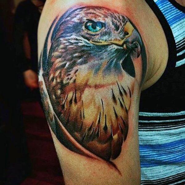 tatuaje de halcón en el brazo