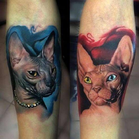 tatuajes de gatos Sphynx
