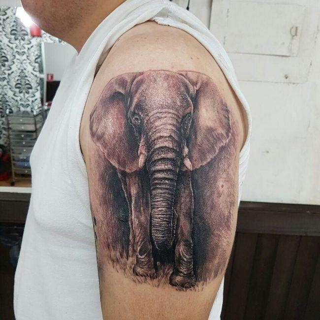 tatuaje realista de elefante