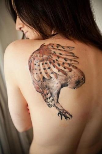 tatuaje de lechuza en la espalda
