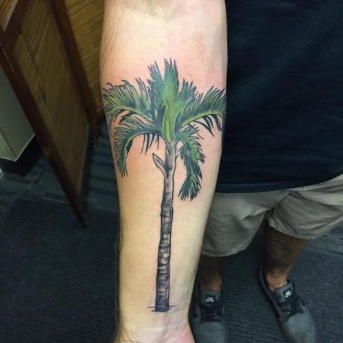 tatuaje de palmera realista en el brazo